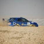 s-DSC_0412-rally arad